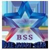BSS:Bule Smart Star(蓝色的、智慧的、星星:蓝智星)